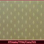 xtrento7y04corn521